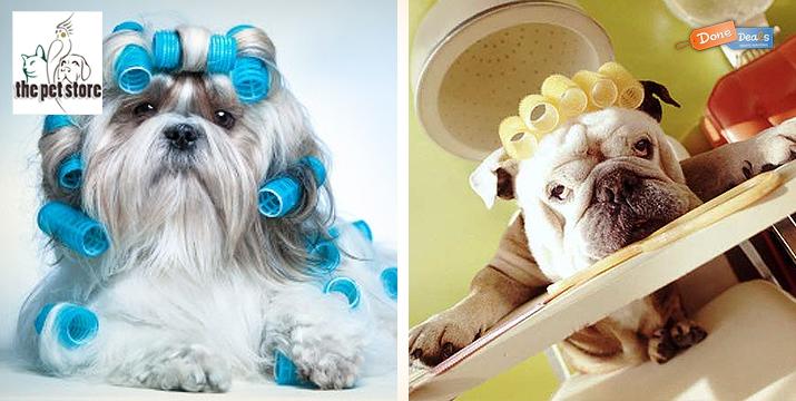 Μοναδική προσφορά για περιποίηση & καλλωπισμό σκύλου!! Μόνο 18€ από 50€ (-64%) για ένα πλήρη καλλωπισμό του σκύλου σας που περιλαμβάνει μπάνιο, κούρεμα (και με ψαλίδι), χτένισμα, ξεκόμπιασμα, καθαρισμό αδένων, κόψιμο νυχιών και αφαίρεση νεκρής τρίχας, χωρίς καμία νάρκωση, από το The Pet Store & Dog Spa στις Αχαρνές. εικόνα