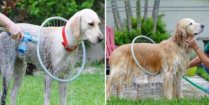 15,90€ από 21,90€ για μια Συσκευή Καθαρισμού Κατοικίδιων 360o - Πλυντήριο Σκύλων, από την DoneDeals Goods με ΔΩΡΕΑΝ πανελλαδική αποστολή στο χώρο σας.