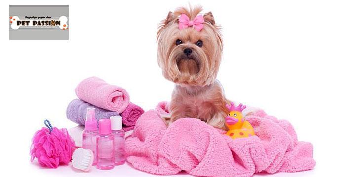 Από 10€ για έναν πλήρη Καλλωπισμό & Περιποίηση Σκύλου που περιλαμβάνει διπλό μπάνιο, χτένισμα/βούρτσισμα, απομάκρυνση νεκρής τρίχας, στέγνωμα, καθαρισμός αυτιών και αρωματισμό, από το Pet Passion στις Αχαρνές. εικόνα