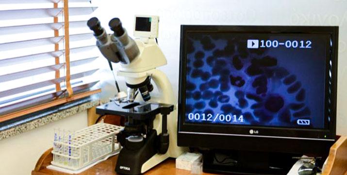 Από 15€ για Εξέταση Προστάτη PSA, Υπέρηχο Προστάτη και  Triplex - Υπερηχογράφημα Οσχέου, από το βιοπαθολογικό - μικροβιολογικό Εργαστήριο Αιμοδιάγνωση Med στη Νέα Κηφισιά και Αφίδνες.