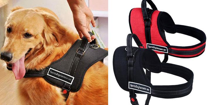 15,90€ από 19,90€ για ένα Ρυθμιζόμενο Λουρί Σκύλου με Σαμαράκι σε 2 χρώματα,  από την DoneDeals Goods με ΔΩΡΕΑΝ πανελλαδική αποστολή στο χώρο σας.