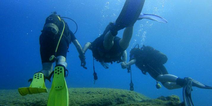 29,90€ από 70€ (-57%) για μία κατάδυση γνωριμίας Scuba Diving με αυτόνομη συσκευή κατάδυσης σε ολιγομελή τμήματα & υπέροχη υποβρύχια φωτογράφηση με την Σχολή Κατάδυσης Dive Blue Dream στα Λιμανάκια Βάρκιζας.