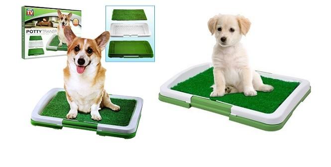 12,90€ από 25€ (-48%) για μία Τουαλέτα για Σκύλους που αποτελεί έναν καινοτόμο τρόπο να μάθετε στο κουταβάκι σας που να πηγαίνει τουαλέτα, όταν δε μπορείτε να το βγάλετε έξω, με παραλαβή από το