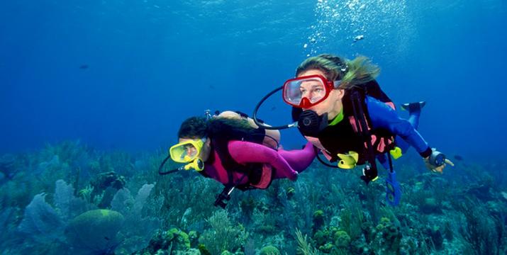 29,90€ από 70€ (-57%) για μία κατάδυση γνωριμίας Scuba Diving με αυτόνομη συσκευή κατάδυσης σε ολιγομελή τμήματα & υπέροχη υποβρύχια φωτογράφηση με την Σχολή Κατάδυσης Dive Blue Dream στα Λιμανάκια Βάρκιζας. εικόνα